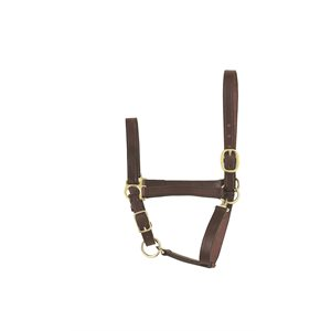ECONOMY LEATHER HALTER