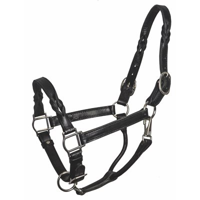 HORSE BLK TWISTED LEATHER HALTER