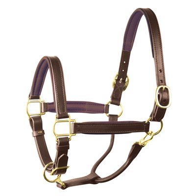 "1"" HORSE HAVANA / BROWN PADDED HALTER"