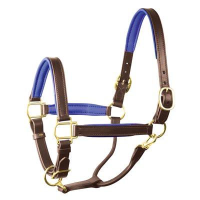 """1"""" HORSE HAVANA / BLUE PADDED HALTER"""