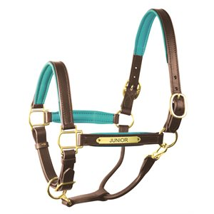 PADDED LEATHER HALTER WITH PLATE
