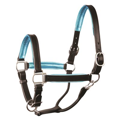 "1"" COB METALLIC BLACK / TURQUOISE PADDED HALTER W / STAINLESS STEEL HARDWARE"