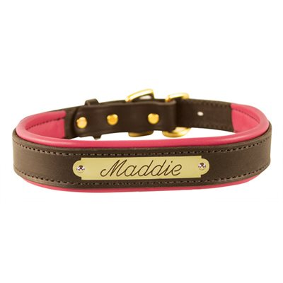 EXTRA LARGE HAVANA / PINK PADDED LEATHER DOG COLLAR W / PLATE