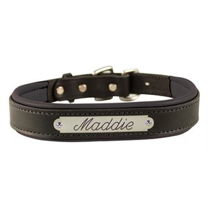 EXTRA SMALL BLACK / BLACK PADDED LEATHER DOG COLLAR W / PLATE