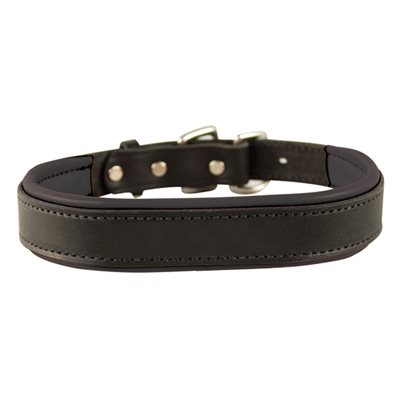 BLACK / BLACK EXTRA SMALL PADDED LEATHER DOG COLLAR