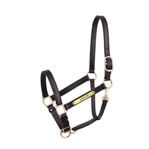 "1"" TURNOUT HALTER W / PLATE"