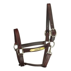 TRACK STYLE TURNOUT LEATHER HALTER W / SNAP & PLATE