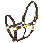 COB HAVANA TWISTED LEATHER HALTER W / PLATE