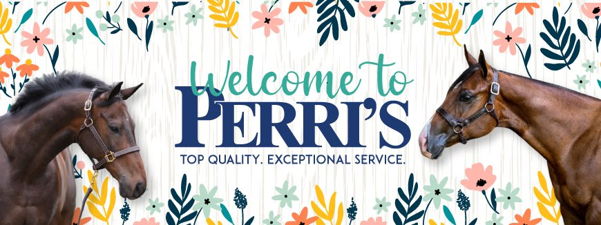 Welcome to Perri's Leather